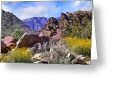 Spring Wildflowers At Anza Borrego Greeting Card