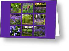 Spring Woodland Picture Window Greeting Card