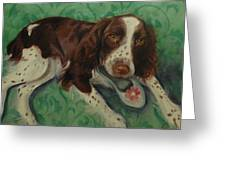 Springer Spaniel With Shoe Greeting Card