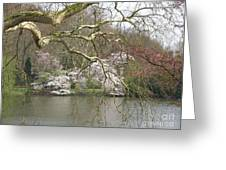 Springtime At The Pond Greeting Card