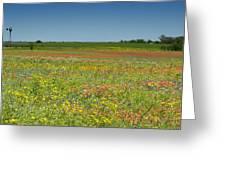 Springtime In Texas 2 Greeting Card