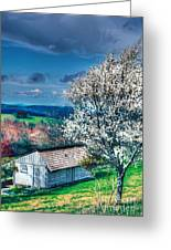 Springtime In The Blue Ridge Mountains II Greeting Card by Dan Carmichael