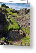 Springtime In The Foothills Greeting Card