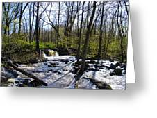 Springtime In The Mountains Greeting Card