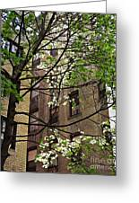 Springtime In Washington Heights 2 Greeting Card