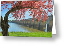 Springtime On The River Greeting Card