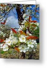 Springtime Pear Blossoms - Hello Spring Greeting Card
