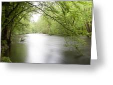 Springtime River Greeting Card