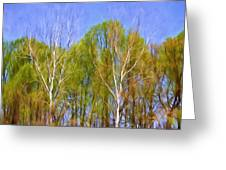 Springtime Trees Greeting Card