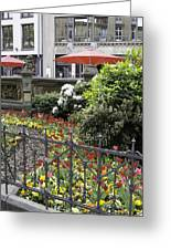 Springtime Tulips In Cologne Germany Greeting Card