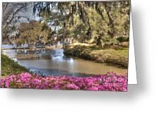 Springtime View Greeting Card