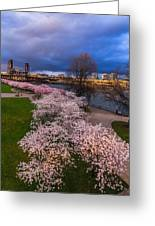 Sprintime At The Waterfront II Greeting Card