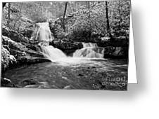 Spruce Flats Falls Greeting Card