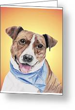 Spunky Former Shelter Sweetie Greeting Card