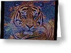 Sq Tiger Sat 6k X 6k Cranberry Wd2 Greeting Card