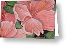 Square Foot Hibiscus Greeting Card