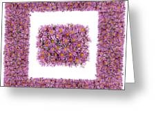 Square Pink Floral Frame   Greeting Card