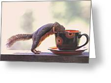 Squirrel And Coffee Greeting Card