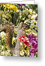 Squirrel In The Botanic Garden-dallas Arboretum V4 Greeting Card
