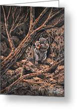 Squirrel-ly Greeting Card