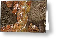 Squirrel's Vision Of A Good Day Greeting Card