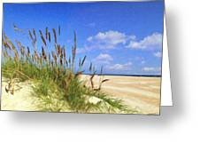 St  Augustine Beach Grass Greeting Card