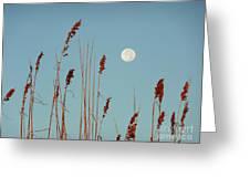 St. Augustine Beach Moonrise Greeting Card