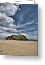 St Catherines Island 7 Greeting Card