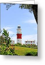 St. Davids Lighthouse Greeting Card