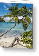 St John's Beach Greeting Card