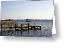 St Johns River Florida - Walk This Way Greeting Card