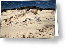 St. Joseph Sand Dunes Greeting Card by Adam Jewell