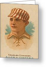 St. Louis Browns 1887 Greeting Card
