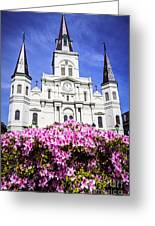 St. Louis Cathedral And Flowers In New Orleans Greeting Card by Paul Velgos