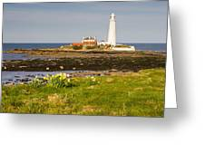St Marys Lighthouse With Daffodils Greeting Card