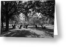 St. Olaf College Adirondacks On The Quad Greeting Card by University Icons