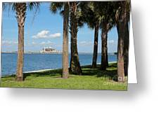 St Pete Pier Through Palm Trees Greeting Card by Carol Groenen
