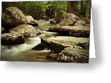 St. Peters Stream Greeting Card