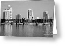 St Petersburg Fl Greeting Card