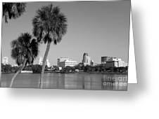 St Petersburg Fl From Mirror Lake Park Greeting Card