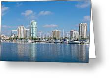 St. Petersburg Panorama Greeting Card