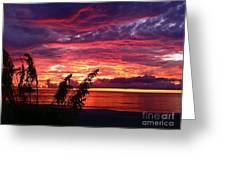 St. Petersburg Sunset Greeting Card