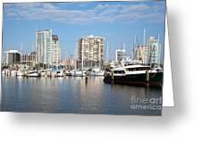 St Petersburg Yacht Basin Greeting Card