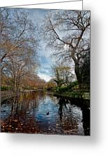 St. Stephens Green Trees Greeting Card