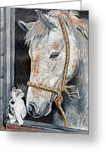 Stablemates Greeting Card