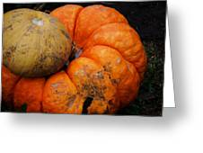 Stacked Pumpkins Greeting Card