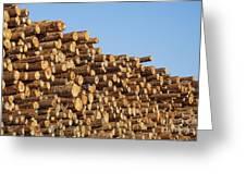 Stacks Of Logs Greeting Card