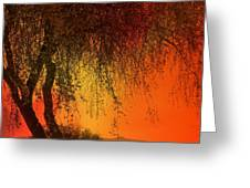 Stained By The Sunset Greeting Card