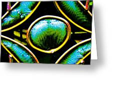 Stained Glass Eye Greeting Card by Rebecca Flaig