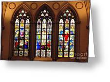 Stained Glass Windows At Saint Josephs Cathedral Buffalo New York Greeting Card